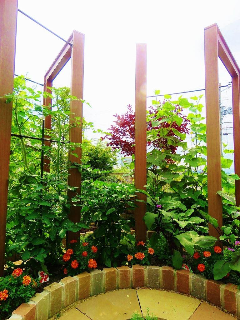 方 ミニ の トマト 支柱 立て